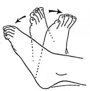 http://www.sengex.com/wp-content/uploads/2020/06/ankle-pumps-298x300.jpg